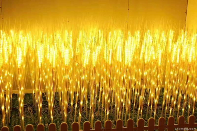 南阳led霓虹灯带造型灯市场营销